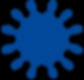 Haeckel_2_blauw.png