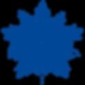 Haeckel_5_blauw.png