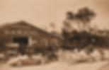 ormondGarage-300x194.png
