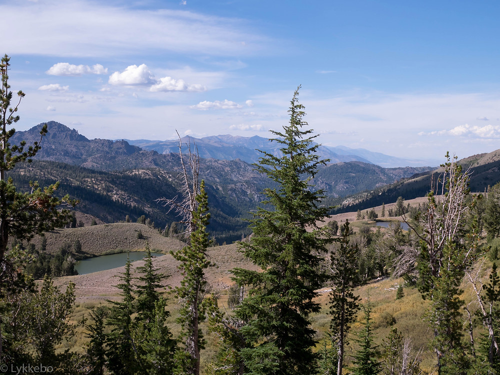 mountains, trees, sky, wilderness