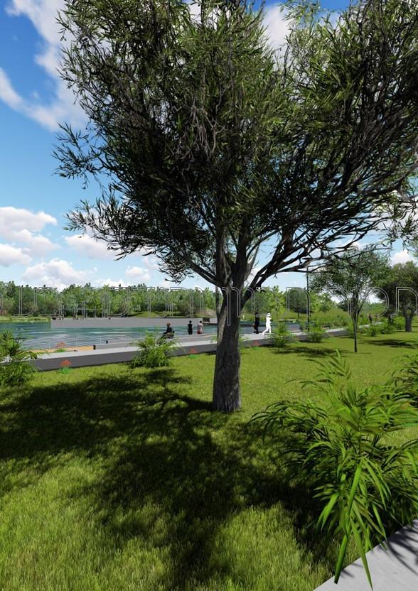 אגם נתיבות