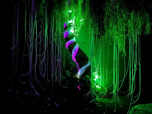 Creative Sensory Spaces - Bliss Cavanagh - Restoration Tree.JPG