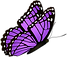 Flying_Butterfly_Purple_Clipart_Image.pn