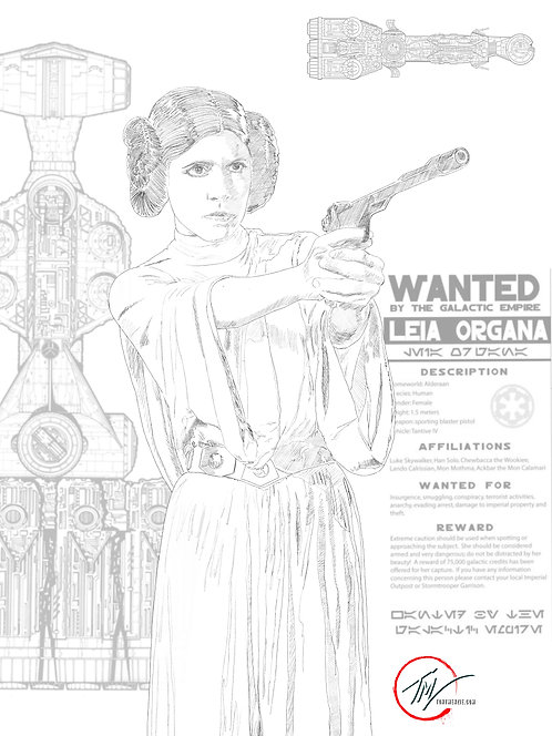 Leia Organa - WANTED -- A3 ART PRINT