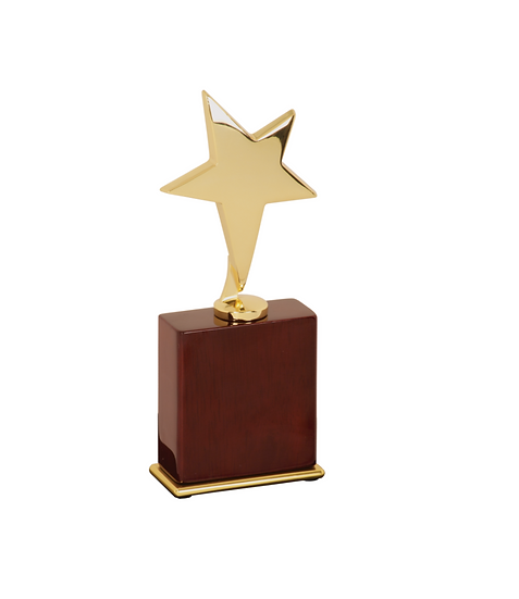 Personalized Gold Star Award on Rosewood Piano Finish Base, Trophies and Awards