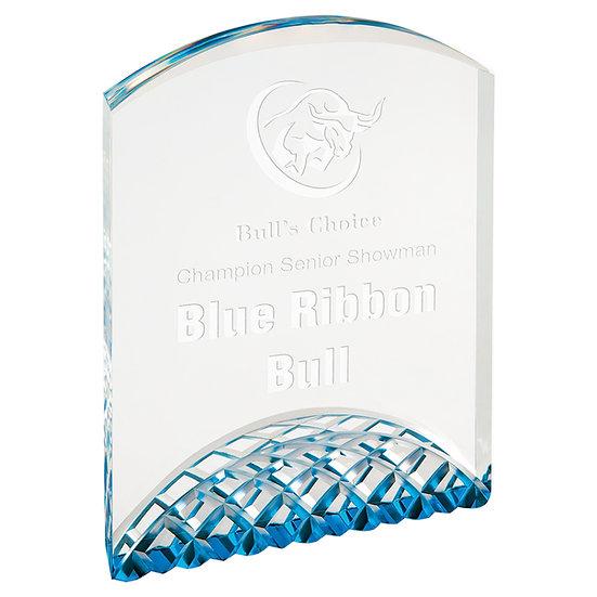 Personalized Horizon Acrylic Award, Employee Appreciation Gift,