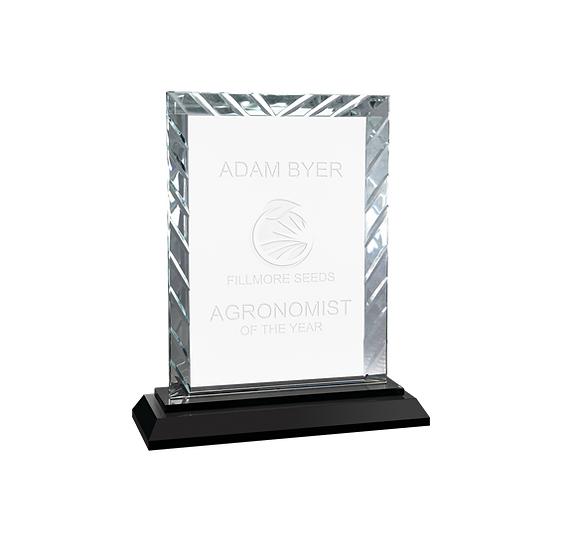 Rectangular Glass Accent Award, Professional Awards, Promotional Awards