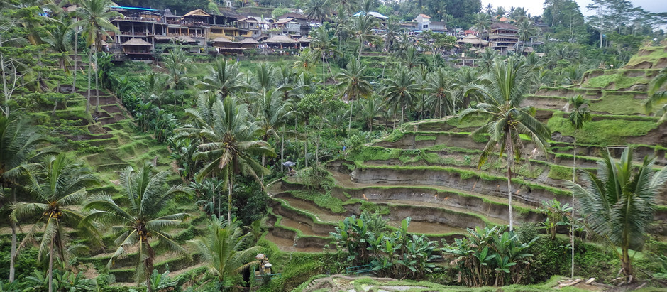 I needed a break from family life so I booked a holiday in Bali - How you can do the same