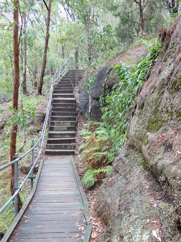 Springwood Stairs of Death