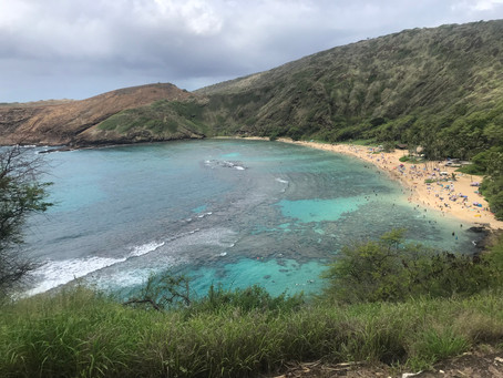 Travelling in Hawaii with Kids