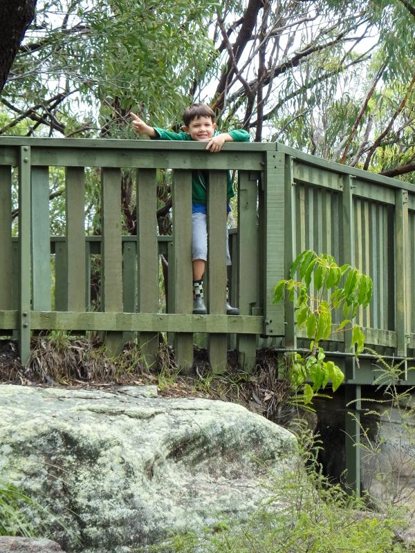 Stringybark Lookout