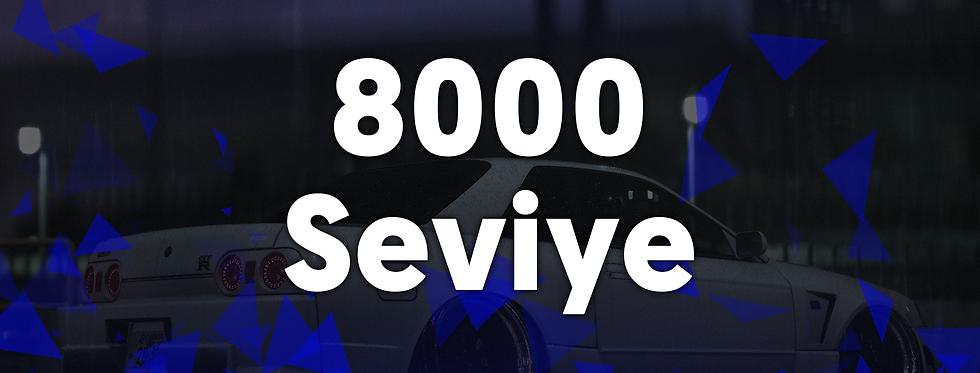 8000 Seviye