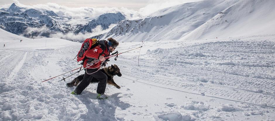 berger allemand de recherche en avalanche