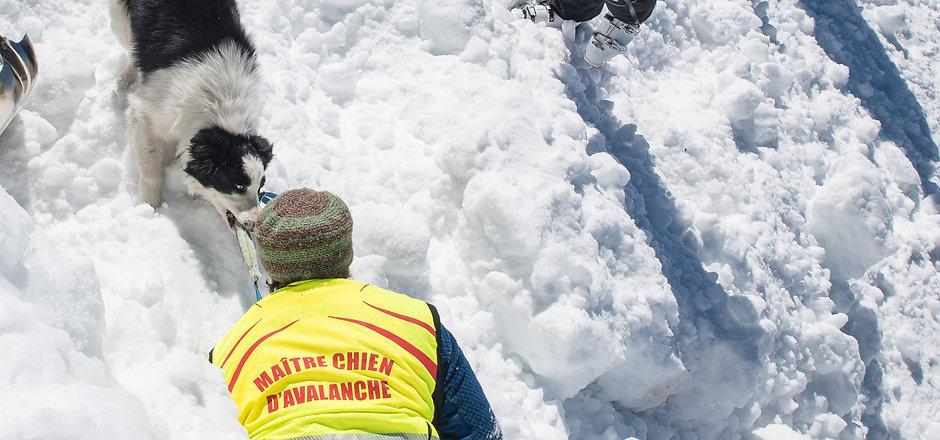 association des maîtres chiens d'avalanches des Hautes-Alpes (05)