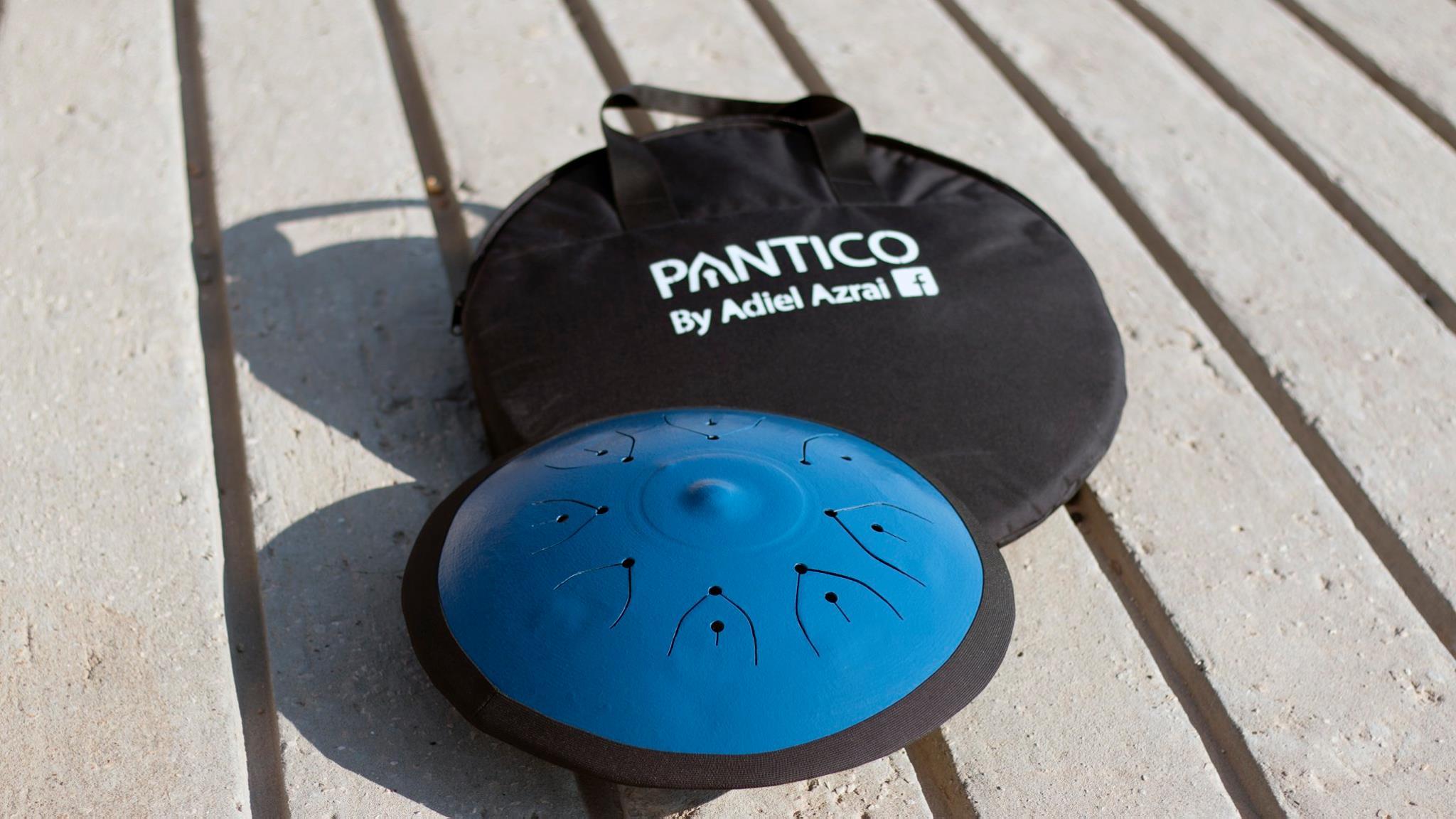 pantico steel tongue drum