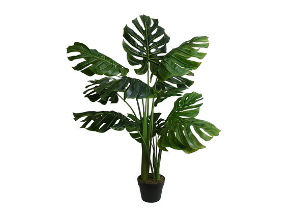 "45"" Split Philo Plant with 12 Leaves"