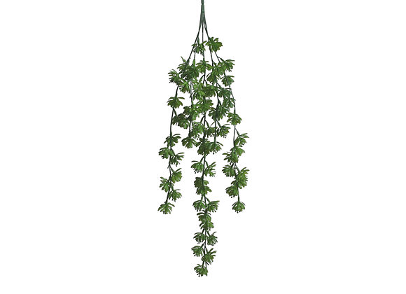 """28"""" Hanging Succulent with 5 Branches"""
