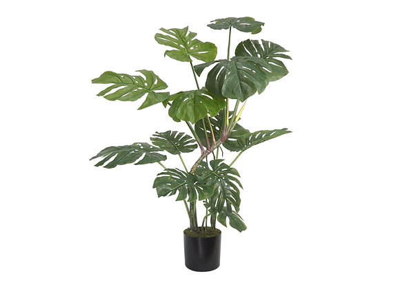 """45"""" Monstera Plant with 14 Leaves"""