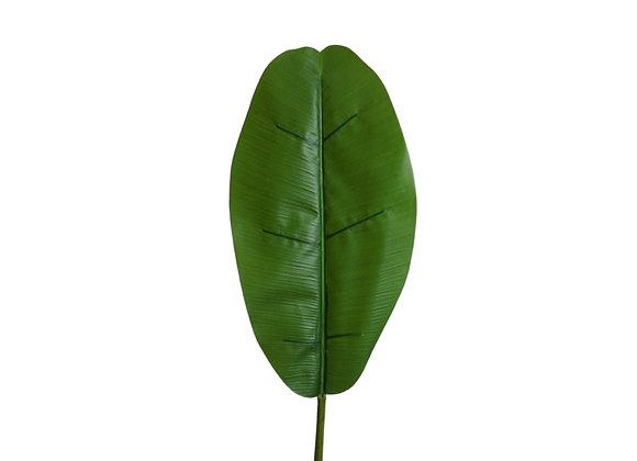 "45"" Banana Leaf (Leaf is 18""L x 9.5""W)"