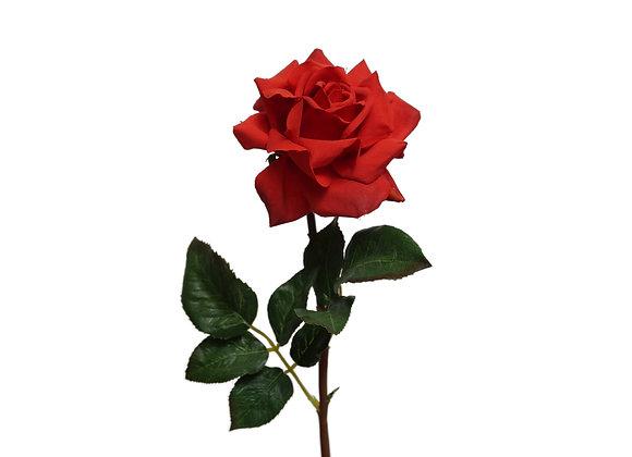 "20"" Single Rose (Open 5"" Diameter)"