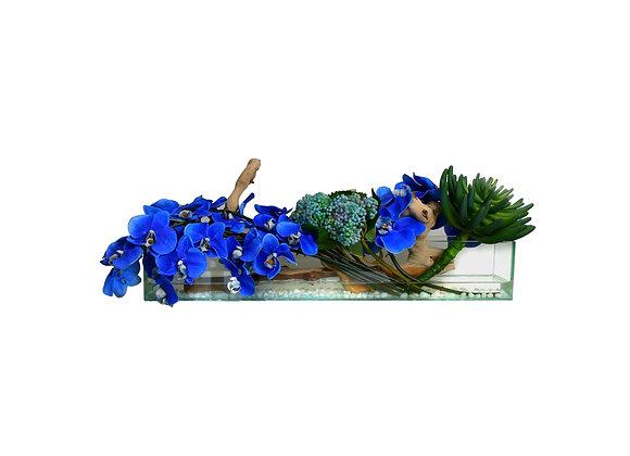 Blue Orchid Arrangement in Glass Aquarium