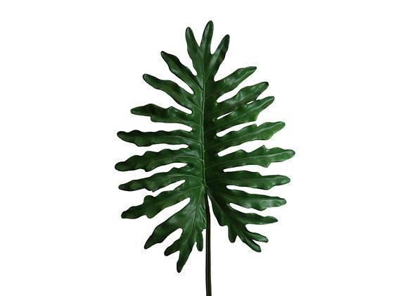 """46"""" Philo Selloum Leaf"""