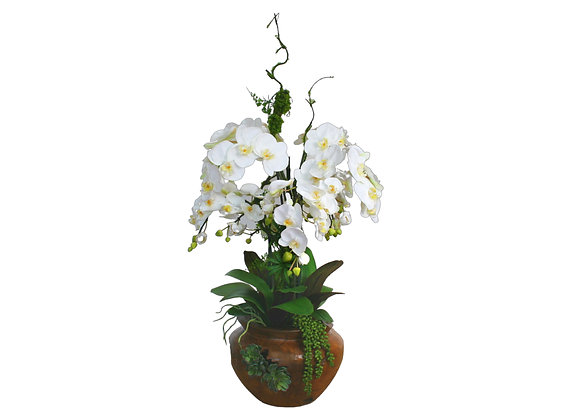 White Orchid Arrangement with Artificial Branch in Teak Bowl
