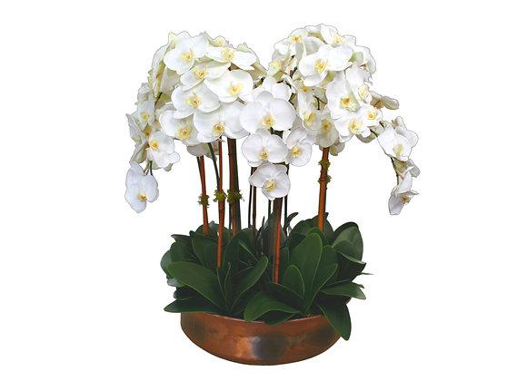 White Orchid Arrangement in Copper Planter