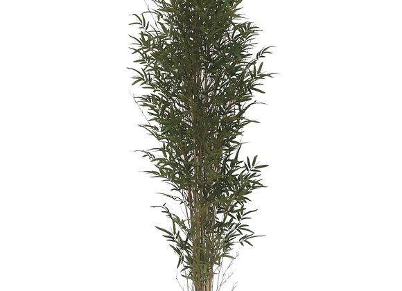 """90"""" Bamboo Tree"""
