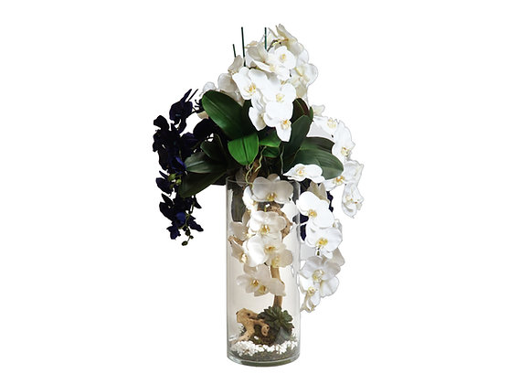 Blue & White Orchid Arrangement in Glass Vase