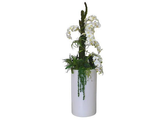 White Orchid Arrangement with Artificial Trunk in Large Cylindrical Vase