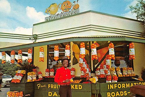 Cypress Gardens Florida Nagel Groves orange seller