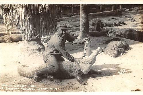 Man wrestling alligator