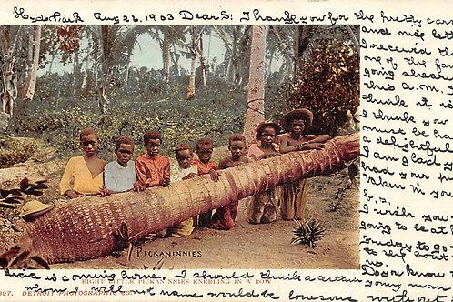 Pickaninnies behind a tree log Detroit Publishing postcard
