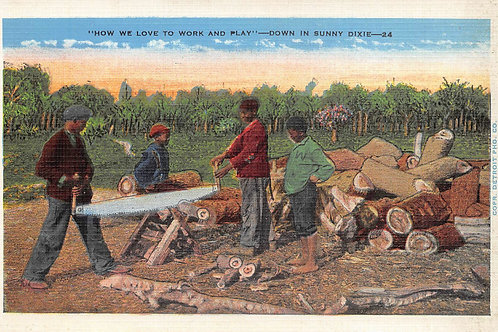 Work & play cutting wood sunny Dixie