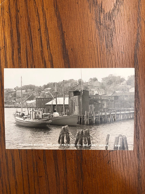 Belfast, Maine- sardine boats of the packing co.