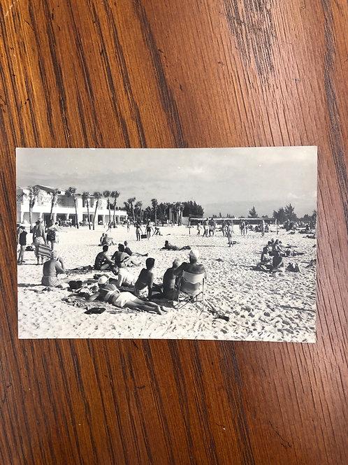Sarasota, Florida - Sarasota - lido beach