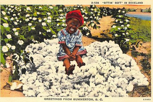 Sittin soft in Dixieland Summerton S.C.