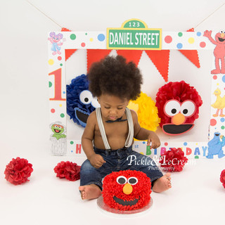 sesame-street-cakesmash-cookie-monster-e