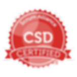 SAI_BadgeSizes_DigitalBadging_CSD.png