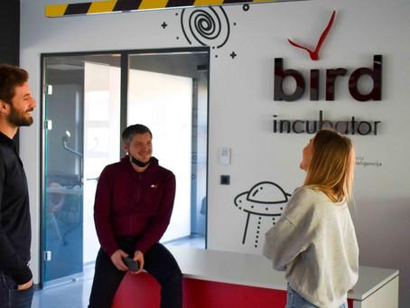 GVI- Bird Incubator ( AI)- collaboartion