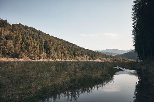 Mountaneous Landscape
