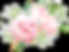 bouquet-17.png