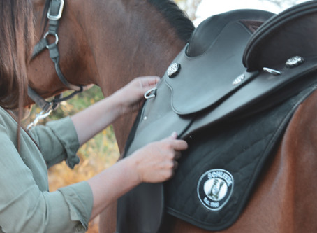 9 Things You Should Know Before You Buy Any Saddle