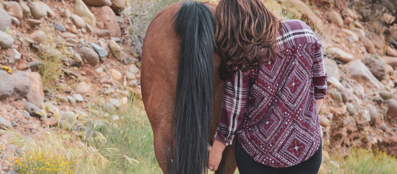 Horse Hair! What Do You Do With It?