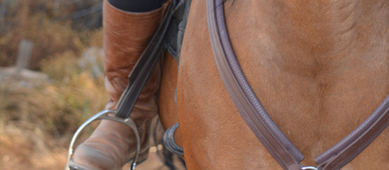 Total Saddle Fit - Stability Stirrup Leathers™