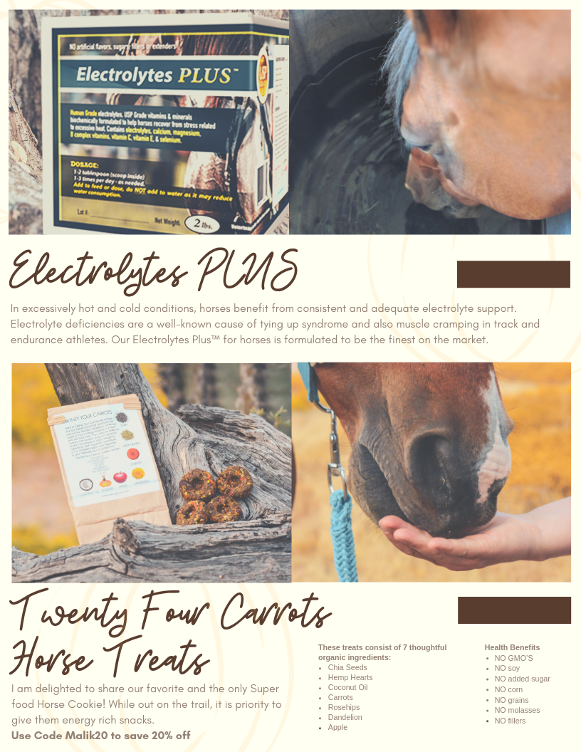 Fall Equine Guide Page 9.png
