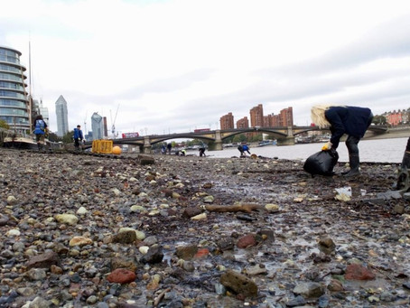 Thousands of wet wipes cleaned from Thames by volunteers