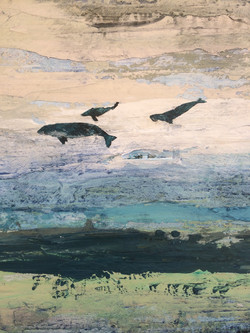 Whales Over Elias Calles (Detail)