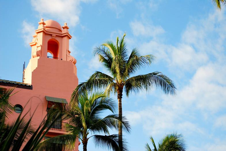Pink Palace & Palms
